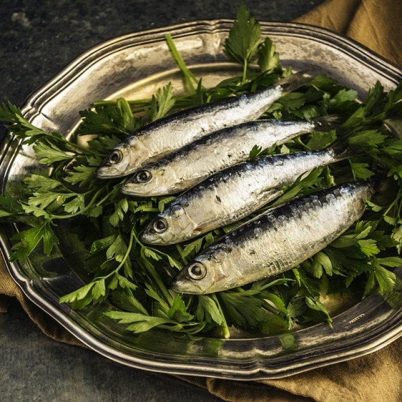 sardines-1468422_960_720